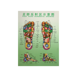 Foot Reflexology Holograph Poster -Large