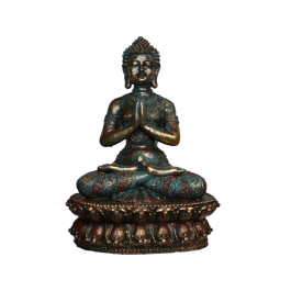 BUDDHA - H248A