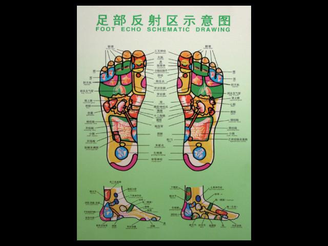 Foot Reflexology Holograph Poster Large Massage Spa