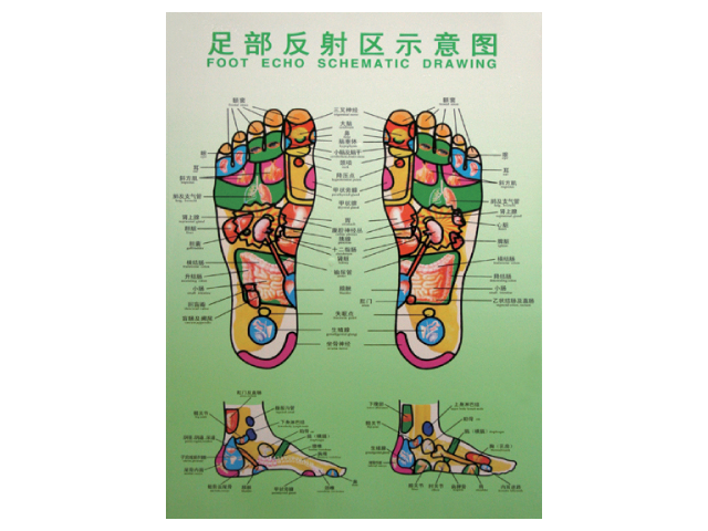 Foot Reflexology Holograph Poster -Small