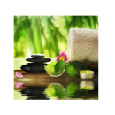 XL Relaxing  Massage Water Decorations Picture Poster