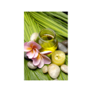 XL Relaxing Massage Decorations Picture Poster- Green Oil