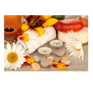 XL Relaxing Massage Decorations Picture Poster- Yellow Flowers