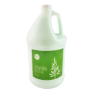 Body High Green Tea & Eucalyptus Lotion 1 Gallon Bottle Free Shipping