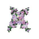 Flower Set 9002-02